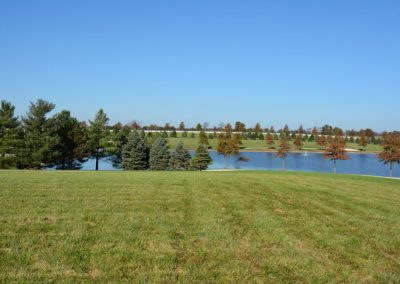 The Aviary Recovery Center - grounds and lakes